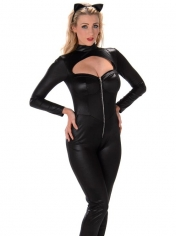 Sexy Black Cat Women - Womens Costume